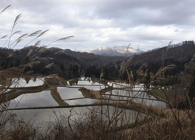冬本番を迎える前の松代の棚田の風景