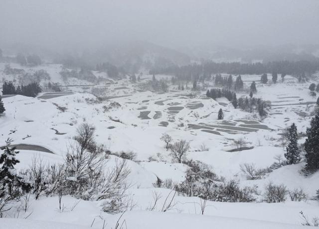 冬の星峠の棚田